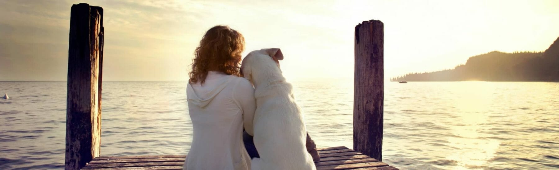 Dog and owner sitting on dock looking at lake