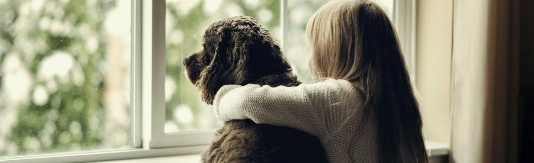 Black dog and owner looking out of window